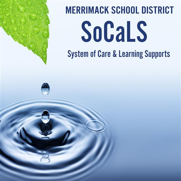 Merrimack School District System of Care and Learning Supports